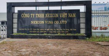 X-ray X-eye 5000N Installation- Nexcon Vina